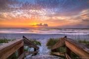 Welcome to salt life, Jacksonville Beach
